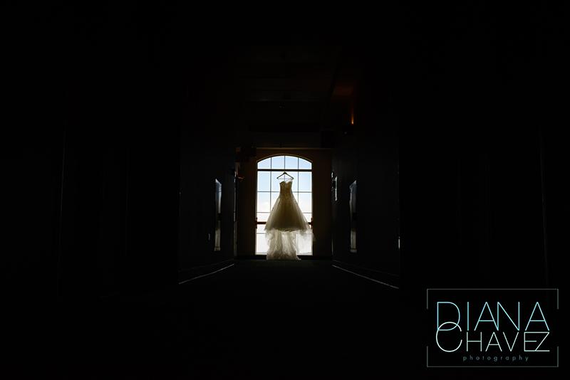 pronovias-wedding-dress